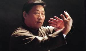 Tai Chi Grandmaster Chen Xiaowang Masterclass in Perth